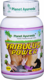 TRIBULUS POWER Kapsule (Tribulus Terrestris) - silný extrakt 500 mg