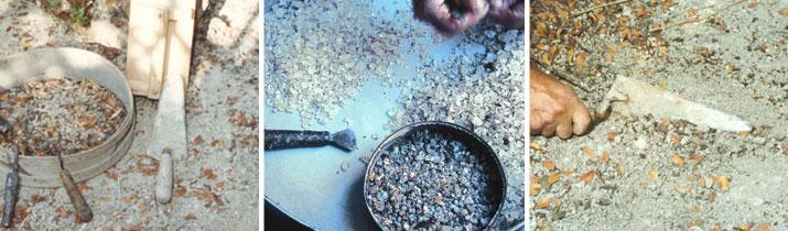 Pestovanie a zber mastichy